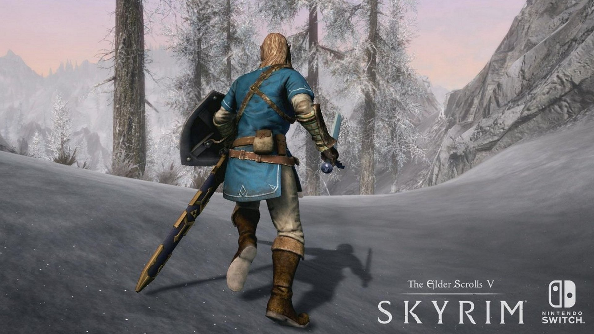 Mods for Skyrim Switch don't sound likely