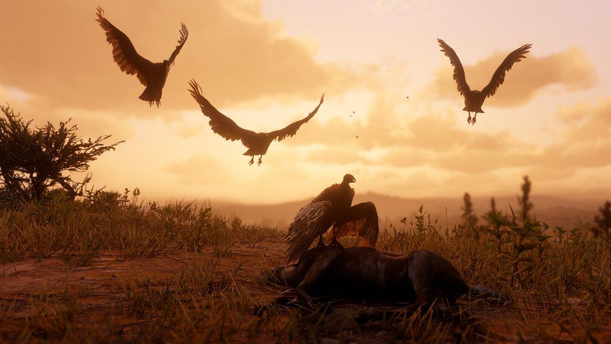 Tous les lieux de chasse aux animaux en Red Dead Dead Redemption 2