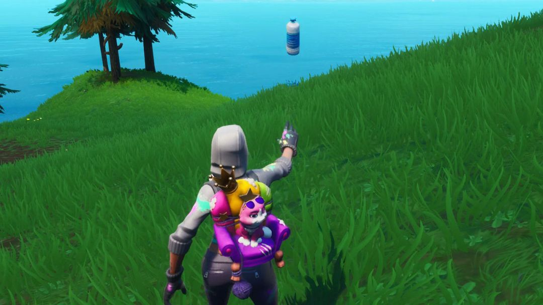 Fortnite Bottle Flip emplacements : Où poser un Bottle Flip sur une cible près d'un poisson géant, d'un lama ou d'un cochon ?