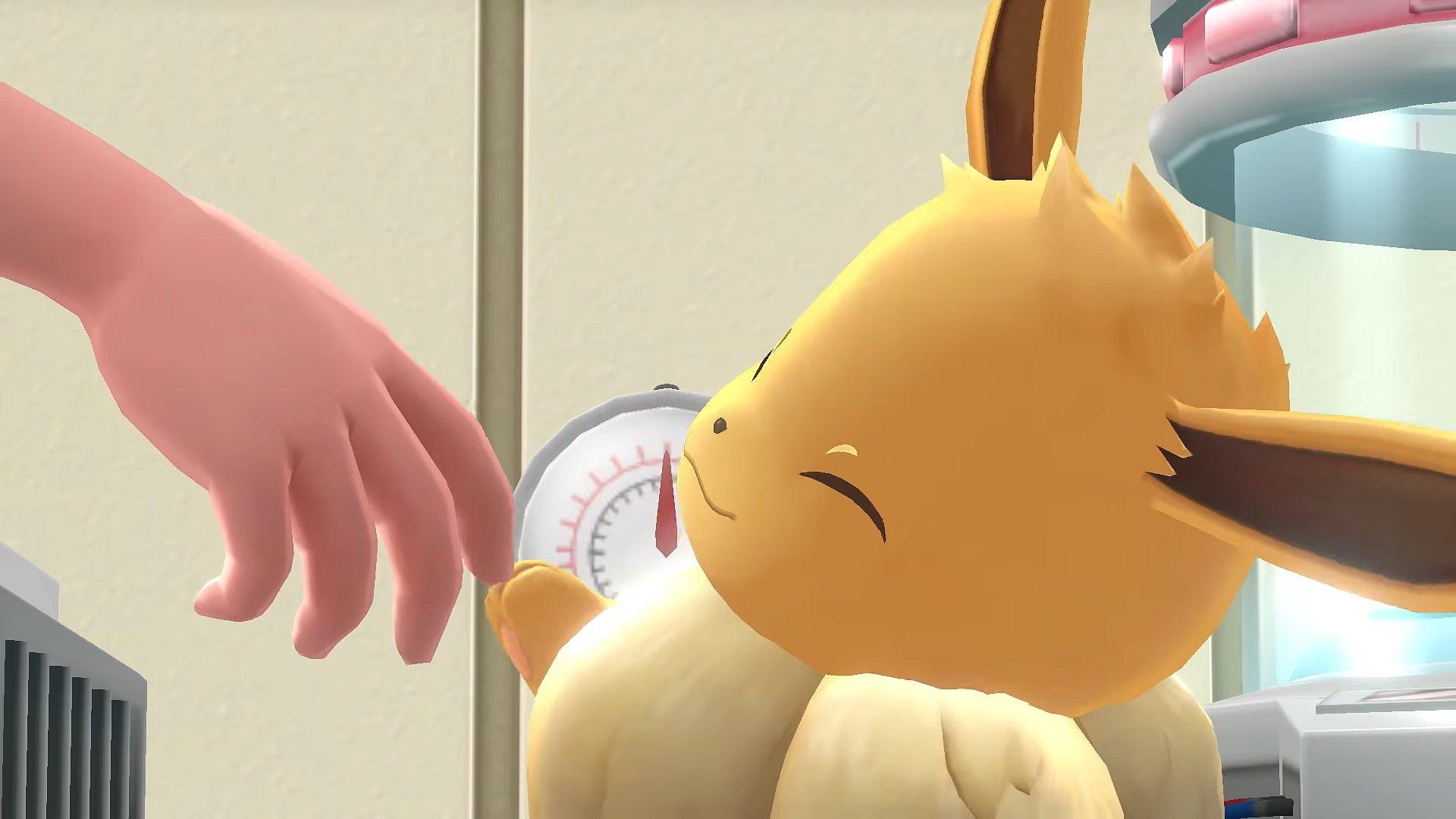 Tous les hacks de nom de Eevee dans Pokemon GO