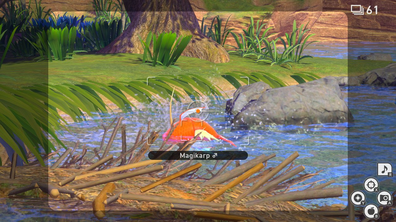 New Pokemon Snap Flopping by the water request guide