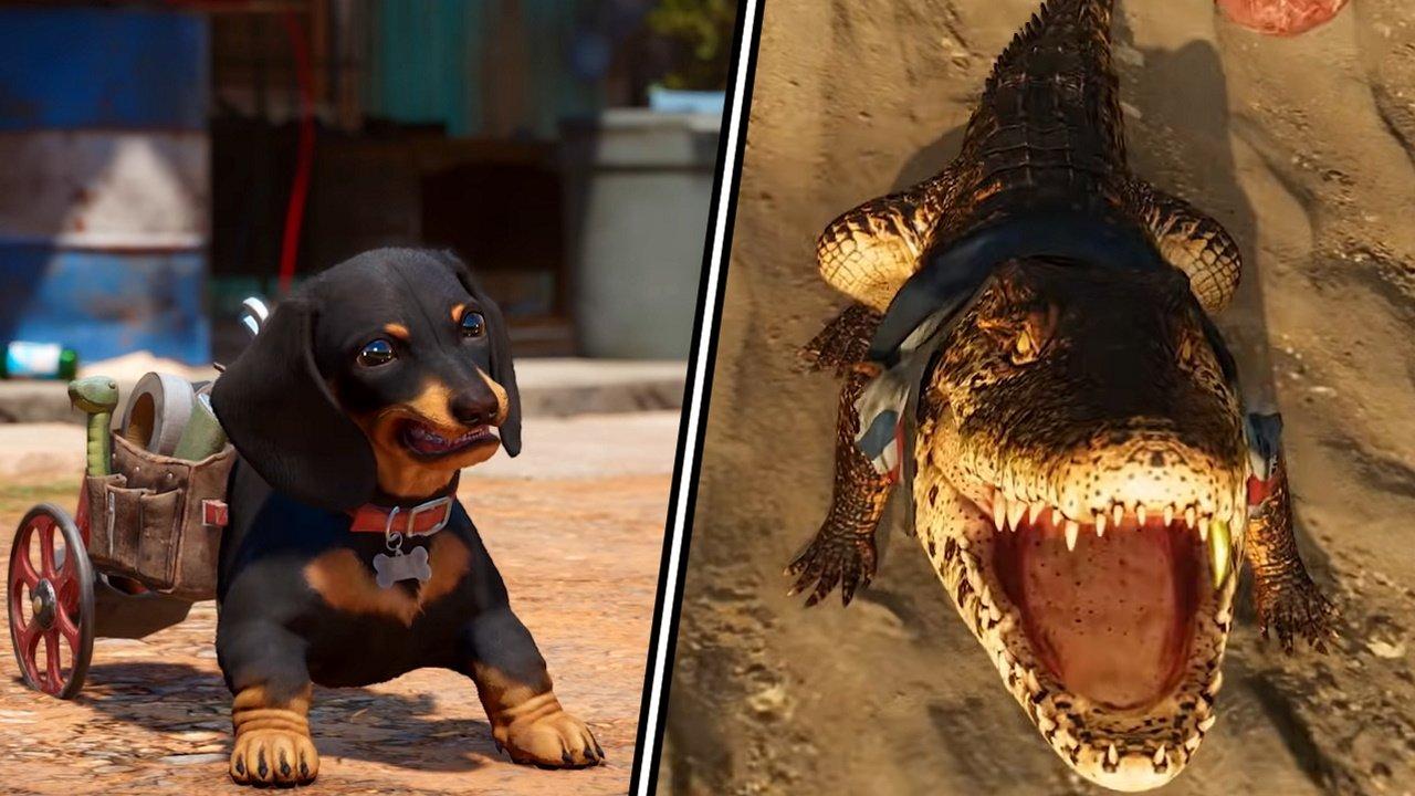 Far Cry 6 Chorizo Guapo amigos animal companions
